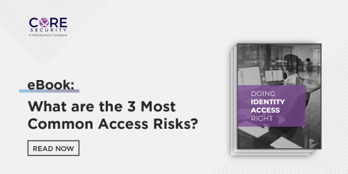Download Doing Identity Access Right eBook